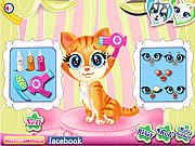 Giochi di Animali da Lavare - Pets Beauty Salon