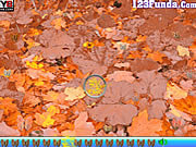 Giochi di Insetti - Hidden Object Insects
